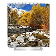 Grizzly Creek Canyon Shower Curtain