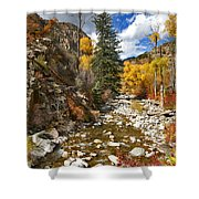 Grizzly Creek Cottonwoods Vertical Shower Curtain