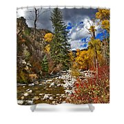 Grizzly Creek Vertical Shower Curtain