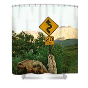 Grizzly Cubs Shower Curtain