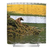 Grizzly Relaxing Shower Curtain