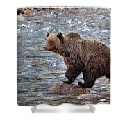 Grizzly River Shower Curtain
