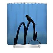 Grosbeak Silhouette Shower Curtain