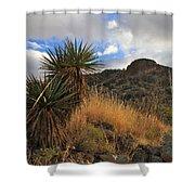 Grosvenor Hill Arizona Shower Curtain