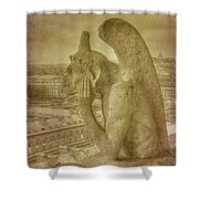 Grotesque From Notre Dame Shower Curtain