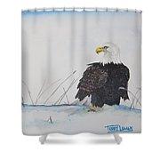 Ground Eagle Shower Curtain