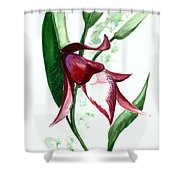Ground Orchid Shower Curtain