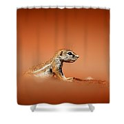 Ground Squirrel On Red Desert Sand Shower Curtain