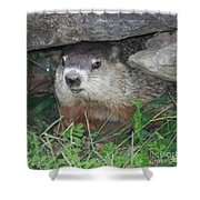 Groundhog Hiding In His Cave Shower Curtain