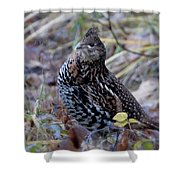 Grouse Shower Curtain