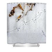 Grouse Tracks Shower Curtain