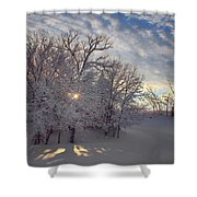 Grove And Road - Winter Shower Curtain