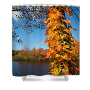 Growing Colors Shower Curtain