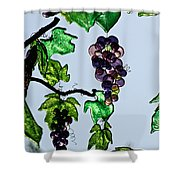 Growing Glass Grapes Shower Curtain