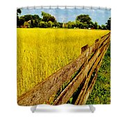 Growing History Shower Curtain