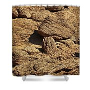 Growing Rock Shower Curtain