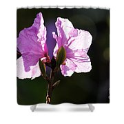 Growing Strong Together Shower Curtain