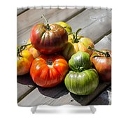 Grown From Seeds Shower Curtain