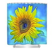 Growth Renewal And Transformation Shower Curtain