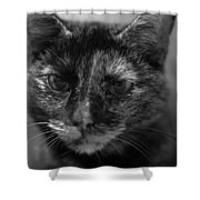 Grumpy Girl Shower Curtain