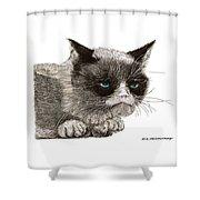 Grumpy Pussy Cat Shower Curtain by Jack Pumphrey