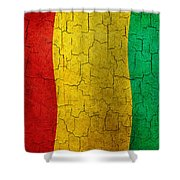 Grunge Guinea Flag Shower Curtain