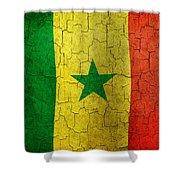 Grunge Senegal Flag Shower Curtain