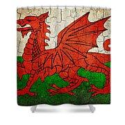 Grunge Wales Flag Shower Curtain