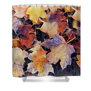 Grungy Autumn Leaves Shower Curtain