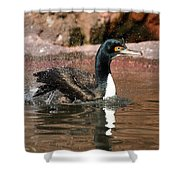 Guanay Cormorant Shower Curtain