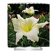 Guardian Angel Daylilies Shower Curtain