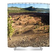 Guardian Of The Dunes Shower Curtain