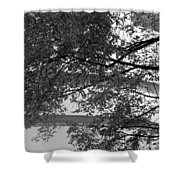 Guggenheim And Trees In Black And White Shower Curtain