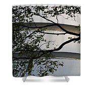 Guggenheim And Trees Shower Curtain