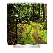 Guide My Path Shower Curtain