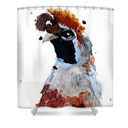 Guilded Shower Curtain