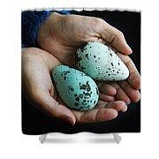 Guillemot Egg Shower Curtain