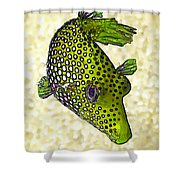 Guinea Fowl Puffer Fish In Green Shower Curtain