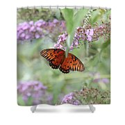 Gulf Fritillary Agraulis Vanillae-featured In Nature Photography-wildlife-newbies-comf Art Groups  Shower Curtain