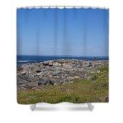Gull Perch Shower Curtain