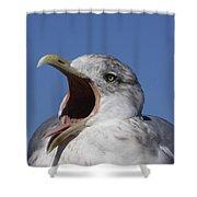 Gull Shower Curtain