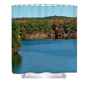 Gull With Splendid View Shower Curtain
