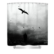 Gulls Over Towers Shower Curtain