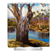 Gum Trees Of The Snowy River Shower Curtain