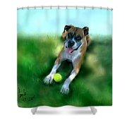Gus The Rescue Dog Shower Curtain