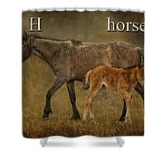H Is For Horse Shower Curtain