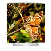 Hackberry Emperor Butterfly Shower Curtain