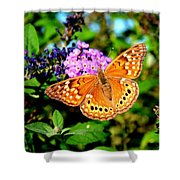 Hackberry Emperor Butterfly On Flowers Shower Curtain