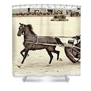 Hackney Pony Cart Shower Curtain