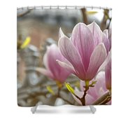 Hagia Sophia Magnolia Shower Curtain